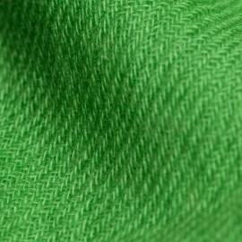 Grasgrünes twillgewebtes Pashmina-Tuch